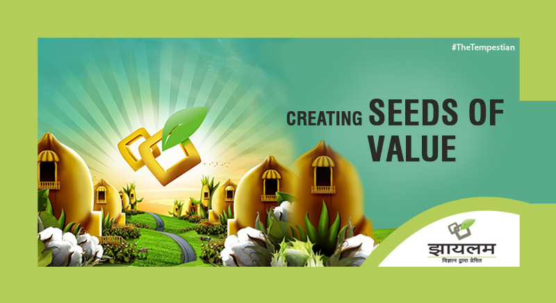 Creating Seeds Of Value.